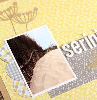 Serenity détail 2