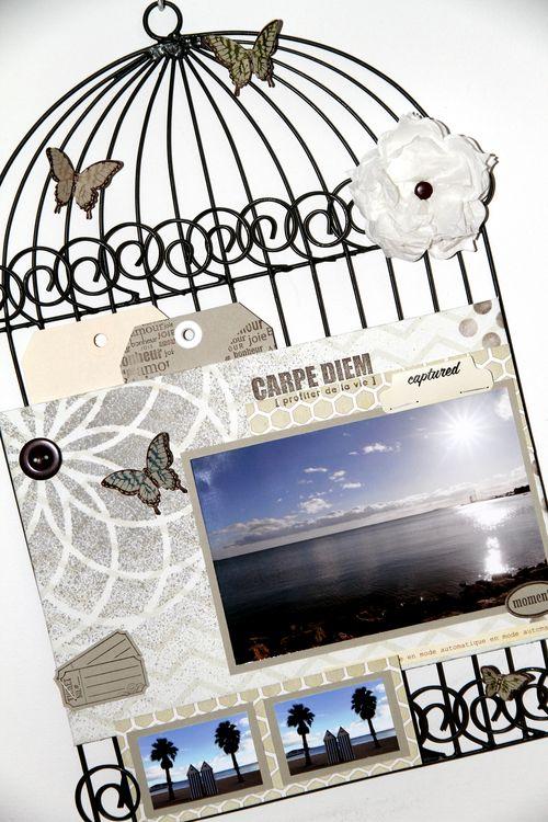 Cage oiseaux détails 1